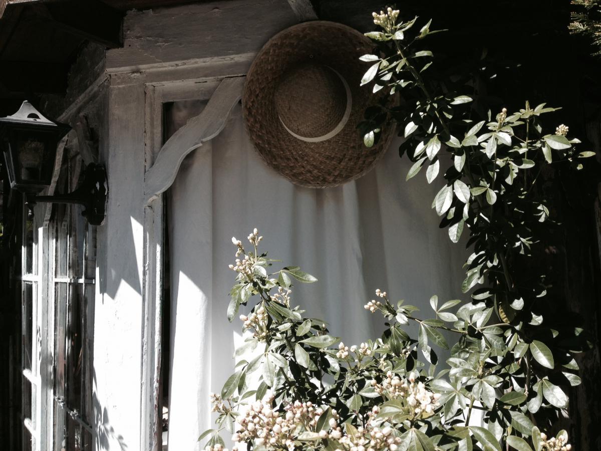 La Maison du Lierre à Bordeaux